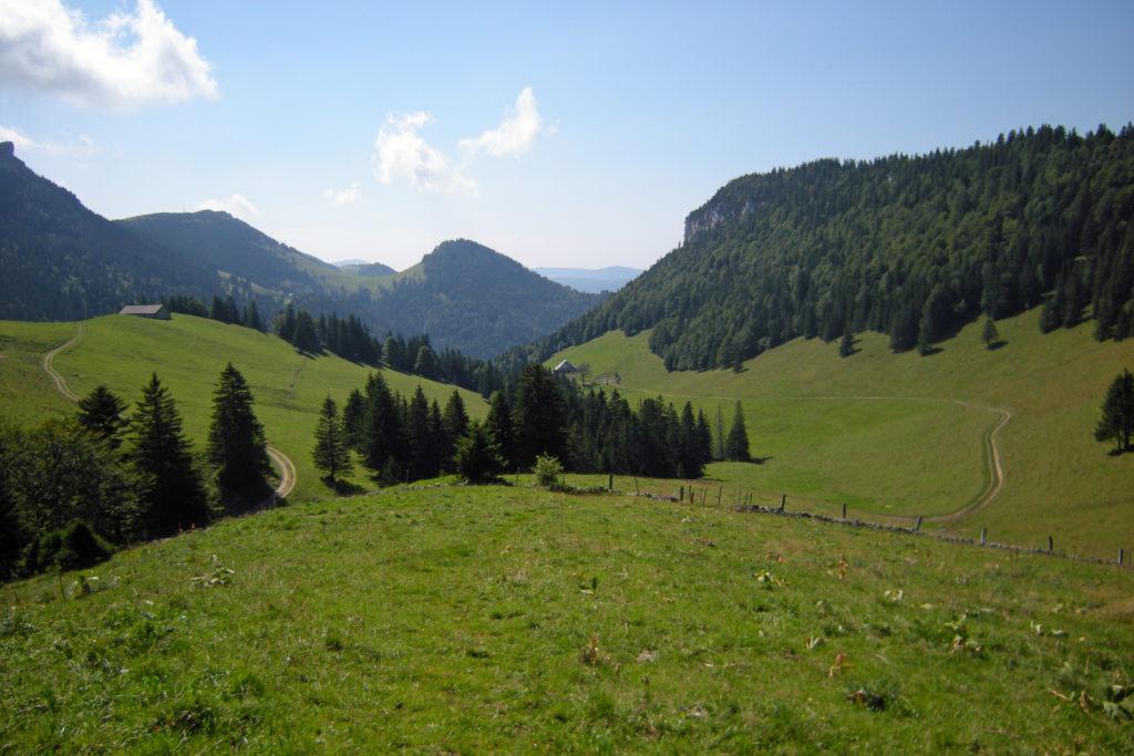 Les prés vallonnés de Franche-Comté