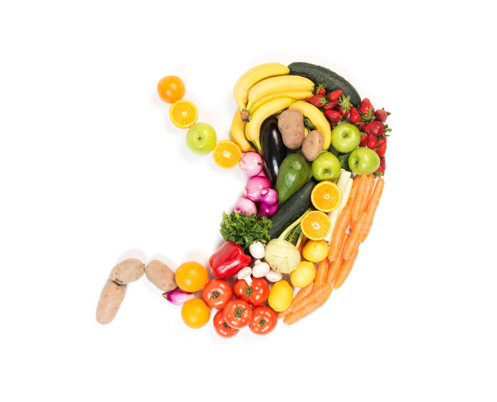 L'estomac et ses aliments