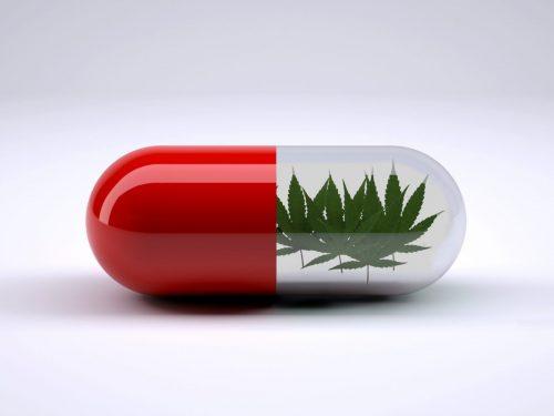 Traiter la Maladie de Crohn avec le cannabis: et si c'était la solution?