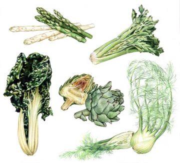 Le top des aliments ventre plat : blette, artichaut, asperge...