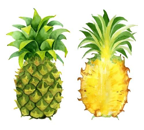 Bienfaits et valeurs nutritionnelles de l'ananas