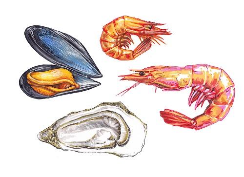 Coquillages et crustacées