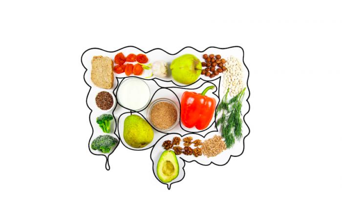 Probiotiques et syndrome de l'intestin irritable