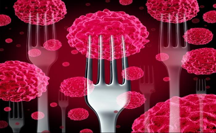 Liens entre alimentation et cancer : info ou intox ?