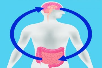 l'axe microbiote-intestin-cerveau