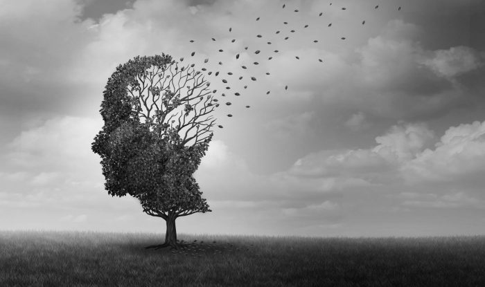 Une prise de sang pour prédire la maladie d'Alzheimer